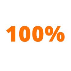 100-icon